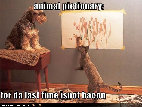 Is Not Bacon
