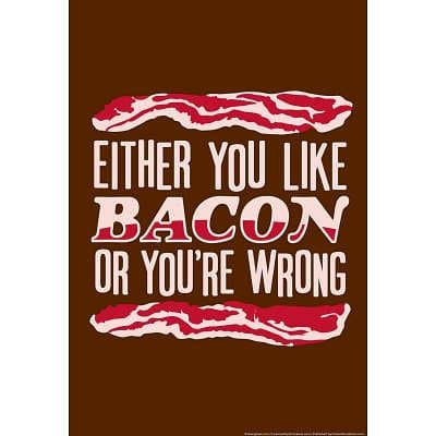 13x19-Like-Bacon-or-Youre-Wrong-Snorg-Tees-Poster-0
