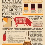 NMR-241089-Bacon-Facts-Decorative-Poster-0