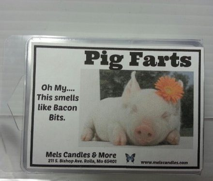 Pig-Farts-Smells-Like-Bacon-Bits-32-Ounce-Wax-Tarts-Scent-Brick-0