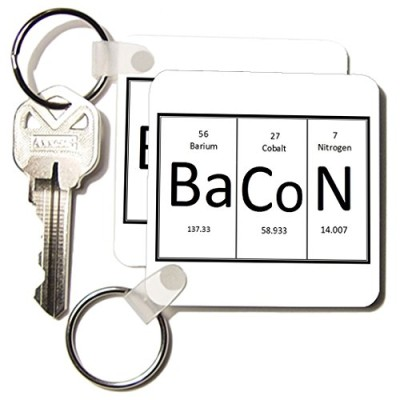 kc1935171-EvaDane-Funny-Quotes-BaCoN-Key-Chains-set-of-2-Key-Chains-0