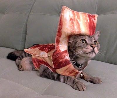 bacon-pimp_sm